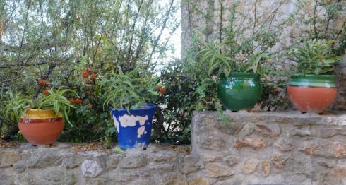 Flower pots on a wall in Pals